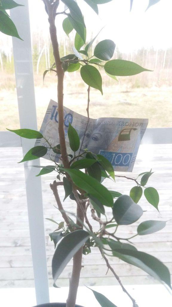 Passiv inkomst: Pengar på träd.